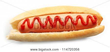 Tasty hotdog isolated on white background