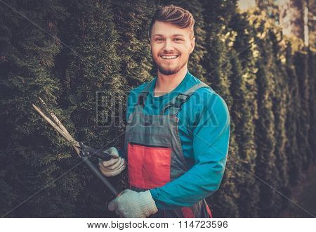 Young gardener cutting trees with clippers