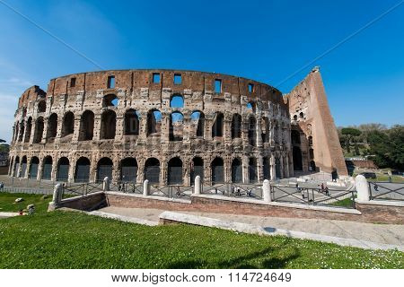 Rome - MARCH 21, 2014: Colosseum  on March 21 in Rome, Italy. Colosseum is an important tourist attraction