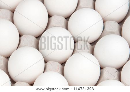 white eggs, background