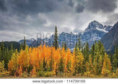 Majestic mountains and glaciers on the background of cloudy sky. Canadian Rockies, Banff National Park in the autumn. Bright orange bush beside the road