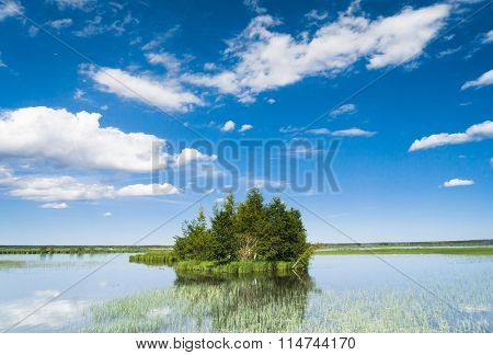 Lake Serenity Forest Around