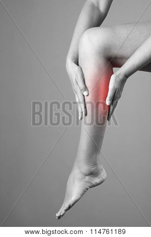 Pain In The Calf Muscle Of The Woman. Massage Of Female Feet. Pain In The Human Body On A Gray Backg