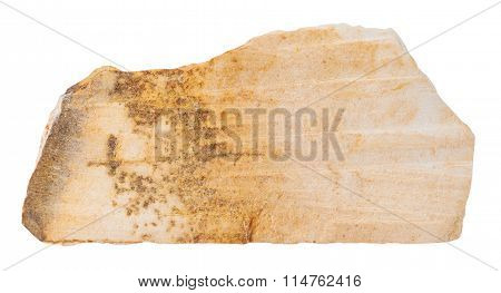 Specimen Of Shale Mineral Stone Isolated