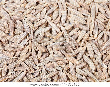 Dried Cumin (cummin) Spice Seeds