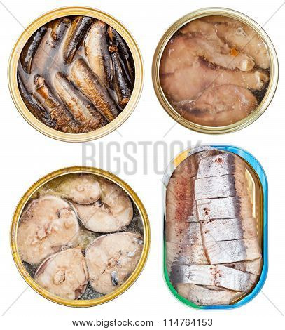 Set On Canned Fish In Open Tins Isolated On White