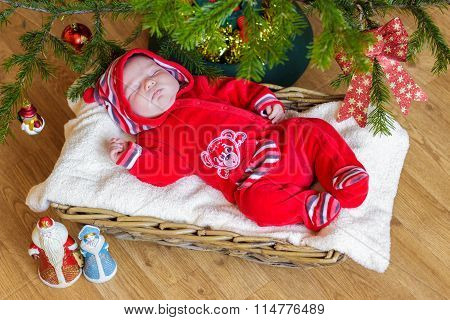 Newborn baby sleeps in a basket
