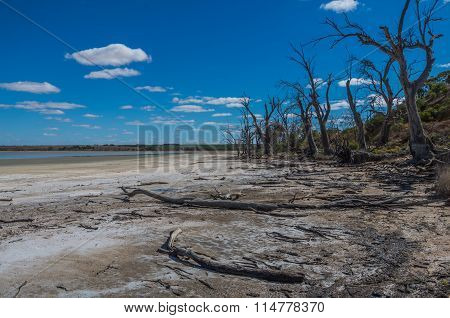 Outback Lagoon