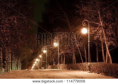 City Avenue In The Winter