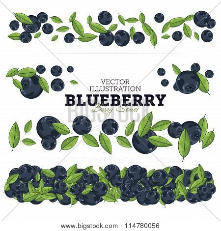 Blueberry Set, Vector.