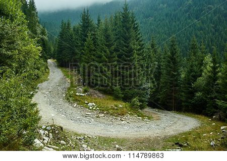 Dirt Road In The Mountains