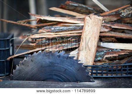 Electric Saw And Chopped Wood
