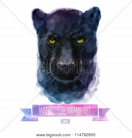 Vector set of watercolor illustrations. Cute panther