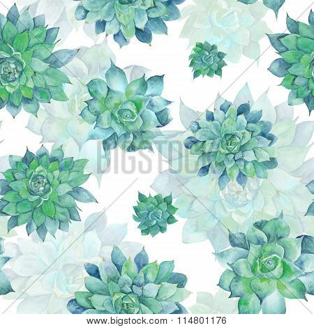 Watercolor Turquoise Succulent Pattern