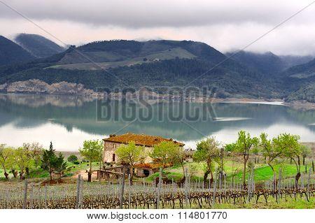 Lake Corbara