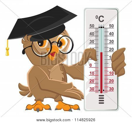 Owl teacher holding thermometer. Indoor thermometer Celsius