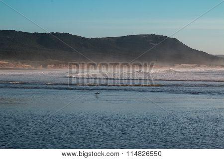Atlantic Ocean Coast, Morocco