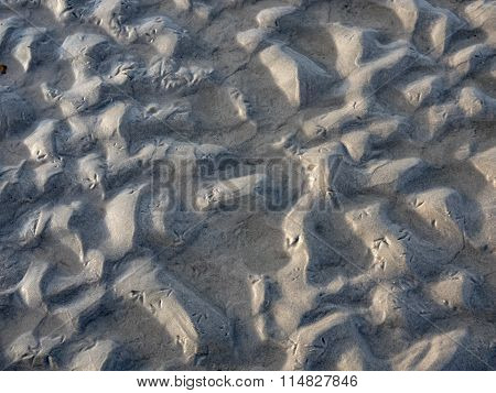 Beach With Seagull Footsteps In The Sand