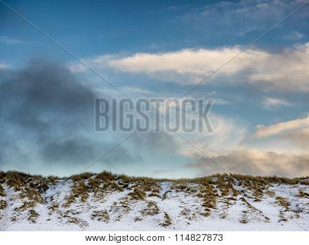 Dunes At The Danish North Sea Coast