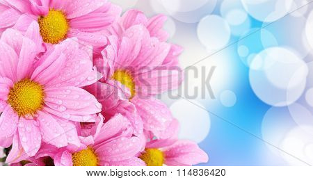 Beautiful boquet  on light blue background