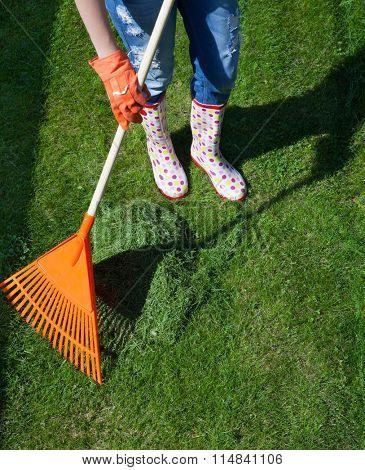 Woman raking freshly cut grass in the garden, spring gardening concept