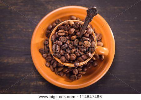 Seeds Of Coffee