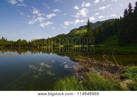 Hiking on the Alp Flix