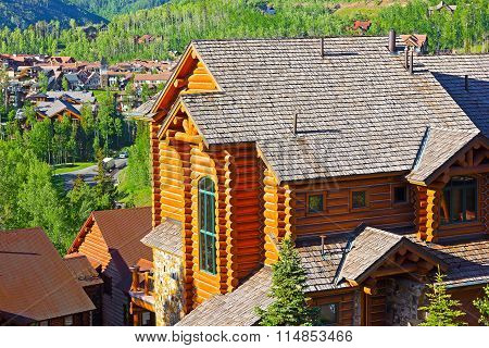 Telluride city panorama and mountain hillsides with coniferous forest.