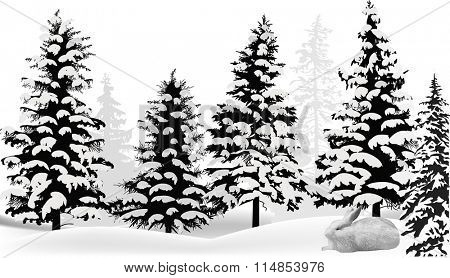 illustration with white hare in winter snow fir forest