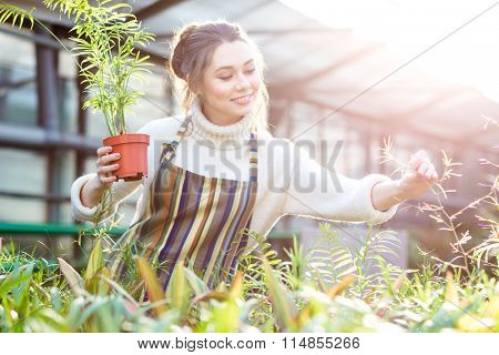 Smiling beautiful young female gardener in white sweater and striped apron taking care of plants and flowers in orangery