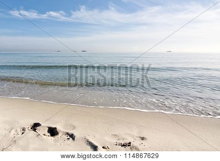 Dreamy Soft Winter Beach