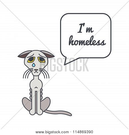 Homeless cat with speech bubble and saying