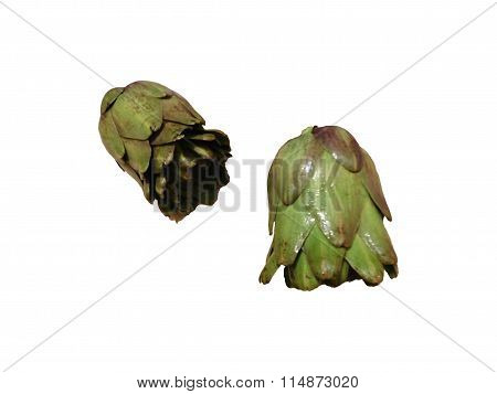 to eat artichokes isolated on white background