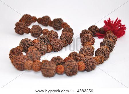 Tibetan Bead-rudraksha