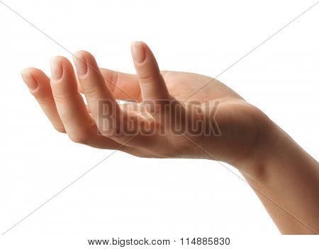 Open woman hand on white background.Isolated.