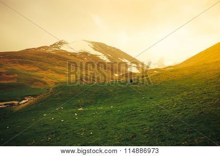 Idyllic Landscape With Fresh Green Meadows And Blooming Flowers And Snowcapped Mountain.