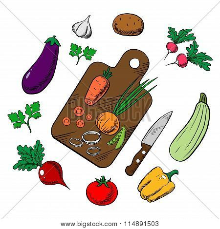 Cooking a vegetable salad, colorful sketch
