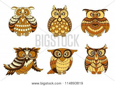 Cartoon owls with brown and orange plumage