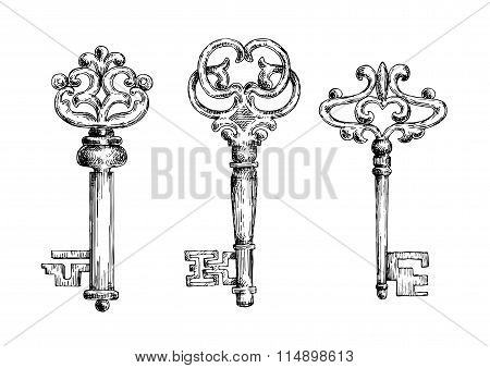 Vintage medieval sketched key skeletons