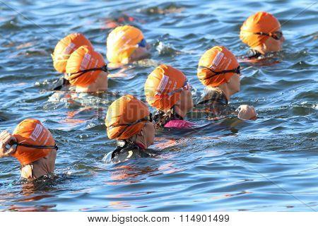 Group Of Triathletes Wearing Orange Bathing Caps In The Water