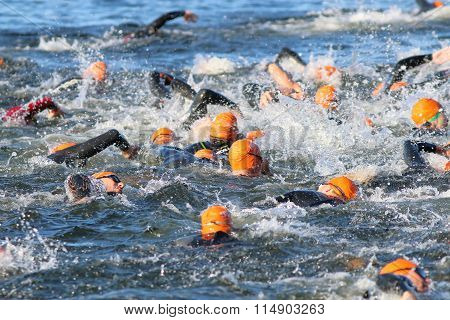 Swimming Chaos Of Male Swimmers Wearing Orange Bathing Caps