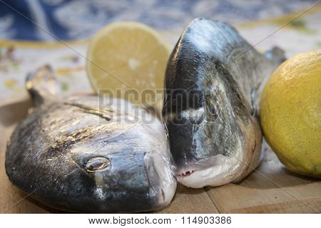 Fresh Giltheads On Wooden Dish