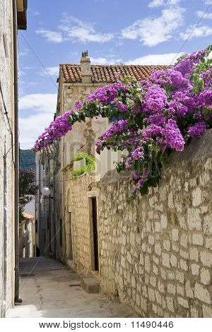 Stone narrow street