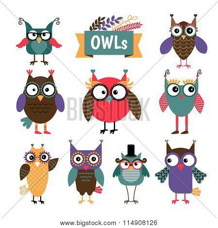 Owl coloured icons set
