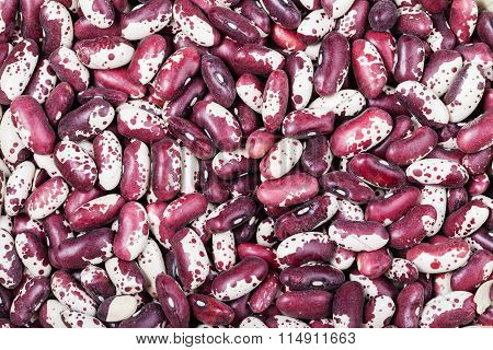 Many Raw Red Spotted Beans