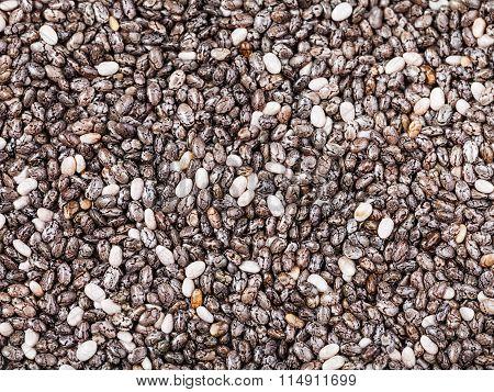 Dry Seeds Of Chia (salvia Hispanica) Plant