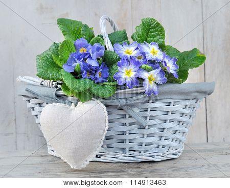 Lovely Basket For Celebration