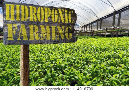 signpost of hydroponic farm
