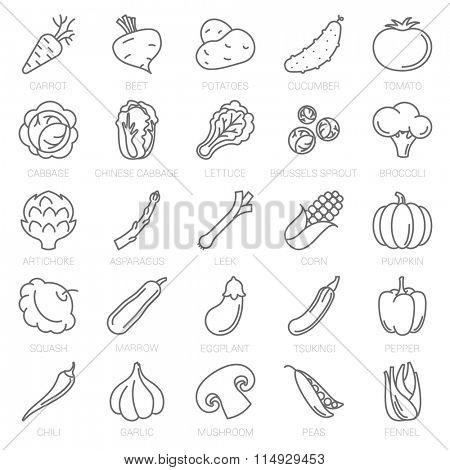 Thin line vegetable vector icon set.