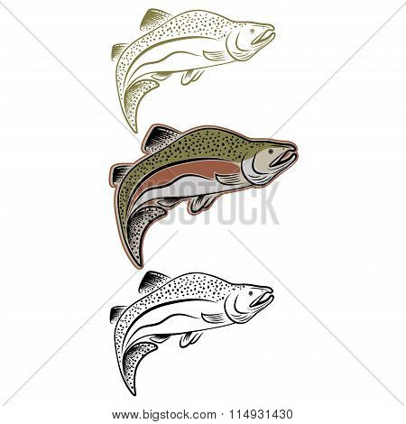 Set Of Jumping Salmon